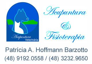 Acunpuntura Vet Floripa