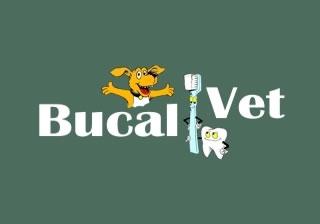 Abrir site da BucalVet